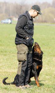 Mariusz Kuzmecki i jego Rottweiler Bero